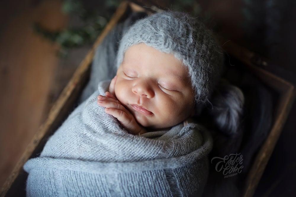 Image of POSED Newborn