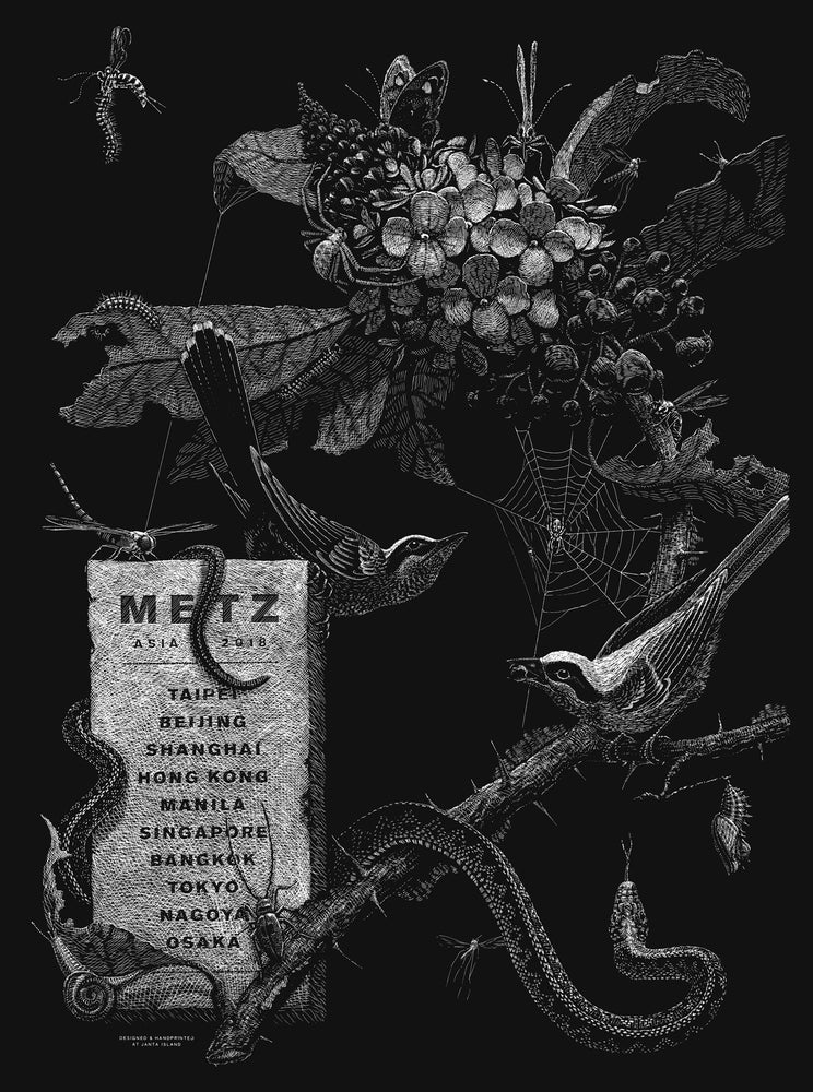 Image of »METZ« Tour-Poster