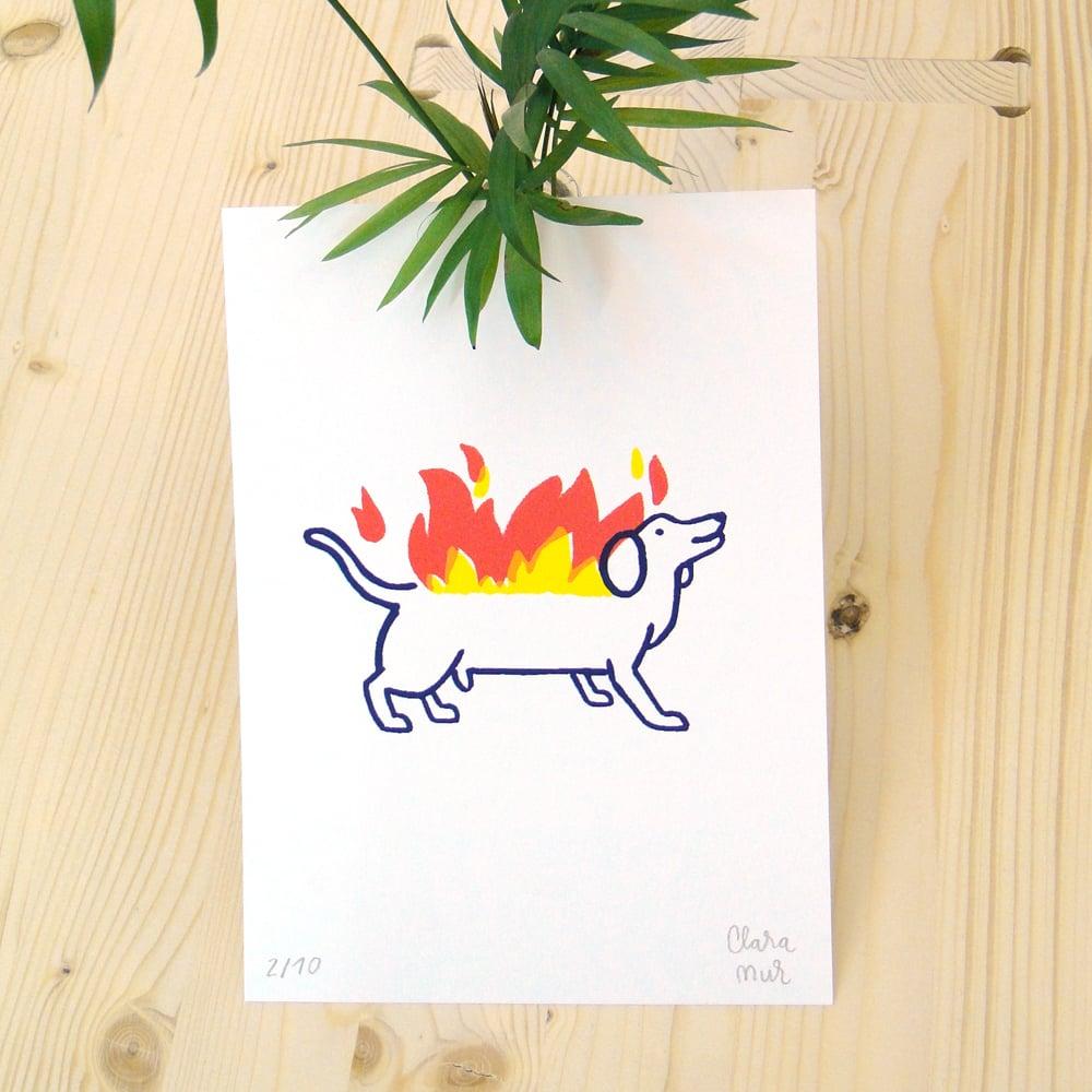 Image of HOT DOG Print