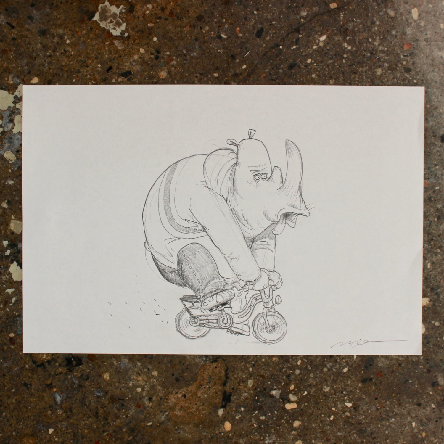Image of Rhino on a bicycle