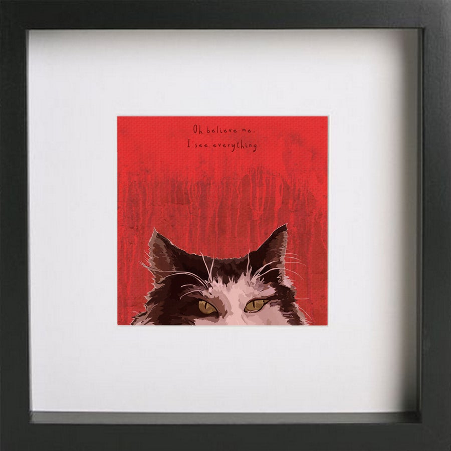Image of Dolittle - Cat
