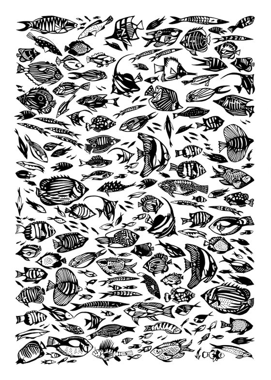 Image of Fish SCREENPRINT