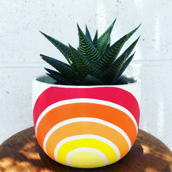 Image of Sunrise Planter