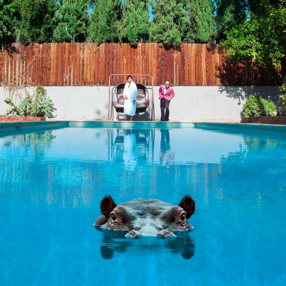 Image of Hippopotamus Double Vinyl LP