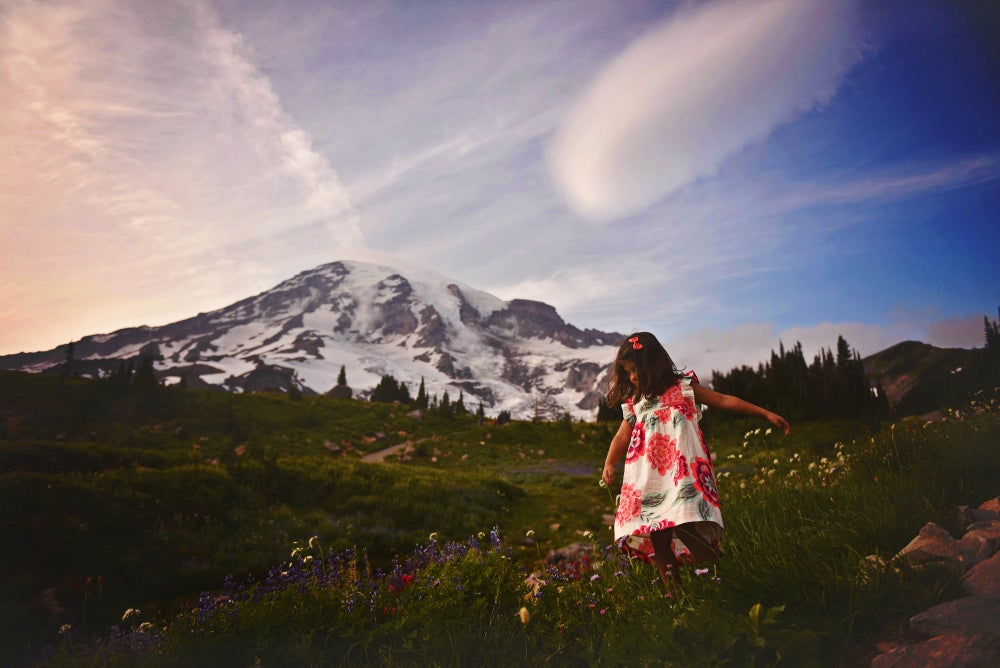 Image of MT RAINIER WILDFLOWERS >> book + depsoit