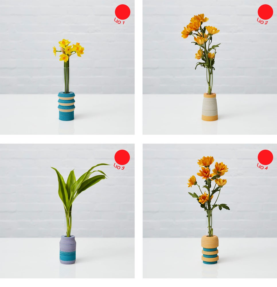 Image of LIO Single Stem Vase