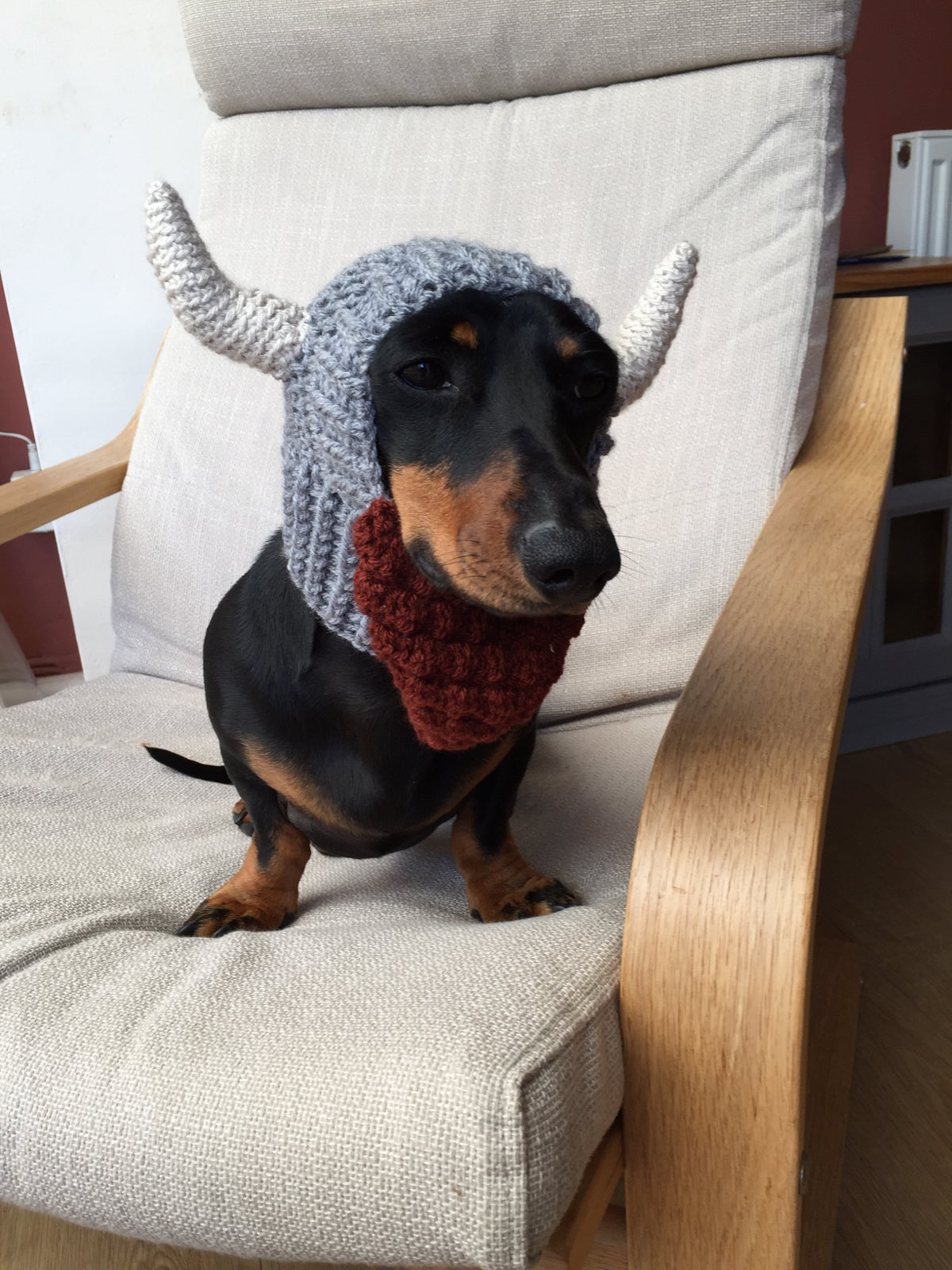 Image of Snazzy Viking