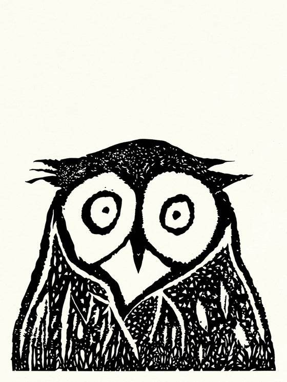 Image of Surprised Owl screen print