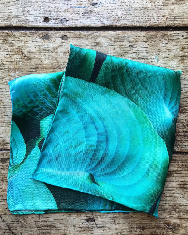Image of Hostas - Small Silk Scarf with Hand Rolled Edges