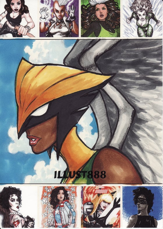 Image of Hawkgirl