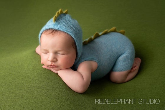 Image of Little Dinosaur Shortie