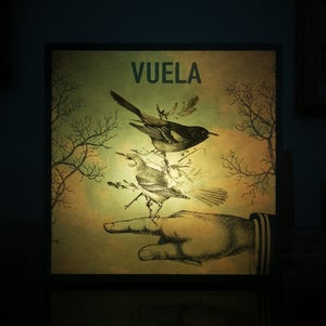 Image of Vuela