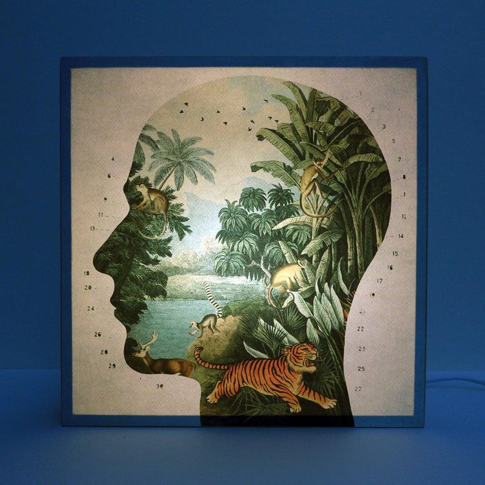 Image of Perfil Tropical 2