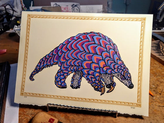 Image of Pangolin Rainbow