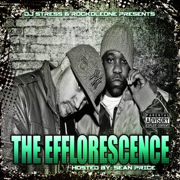 Image of DJ Stress & Rockoleone- The Efflorescence (CD)