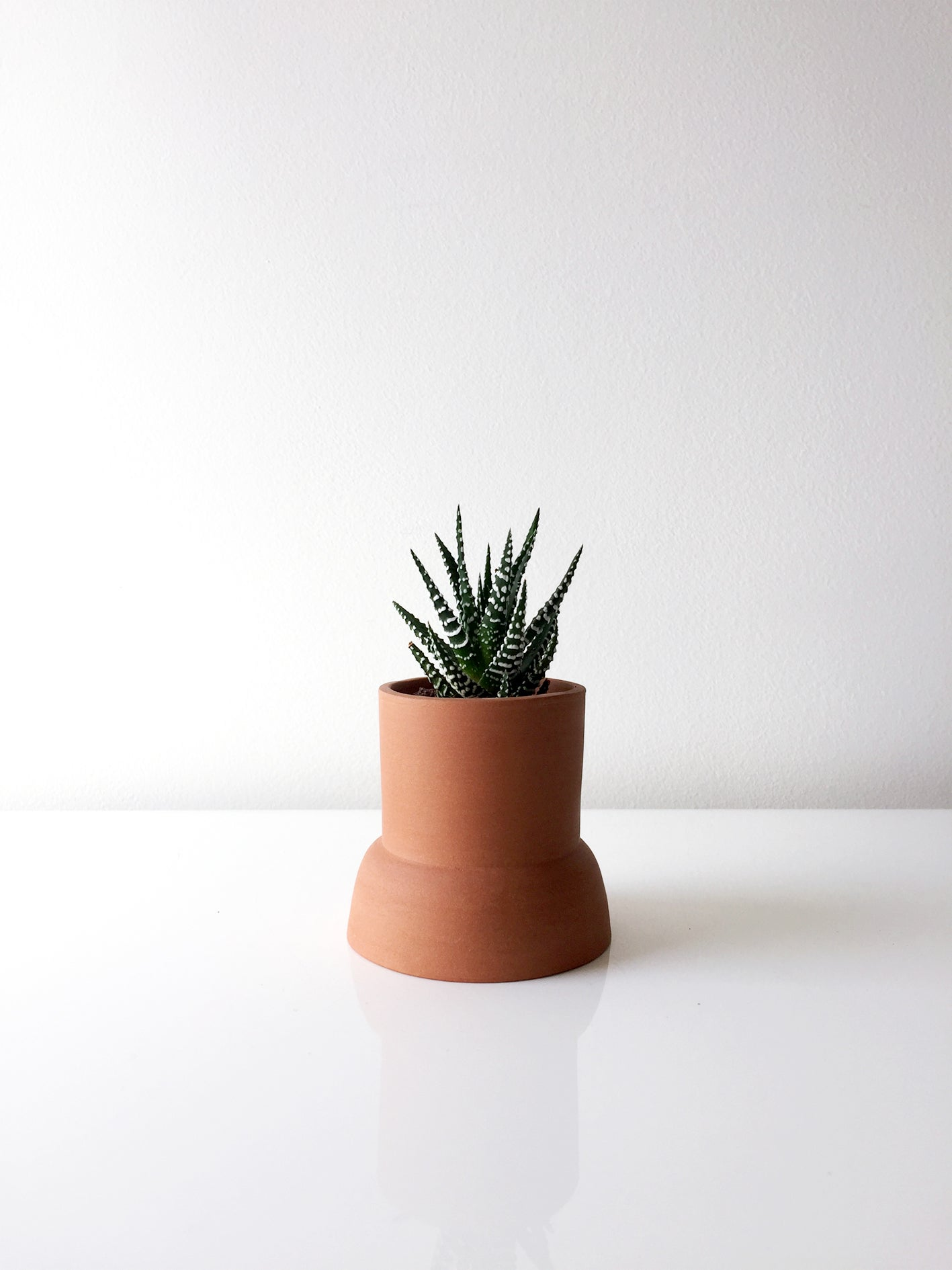 Image of DOUBLE SIDED PLANTER