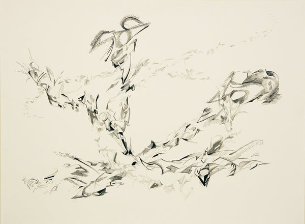 Image of Murmuration #1