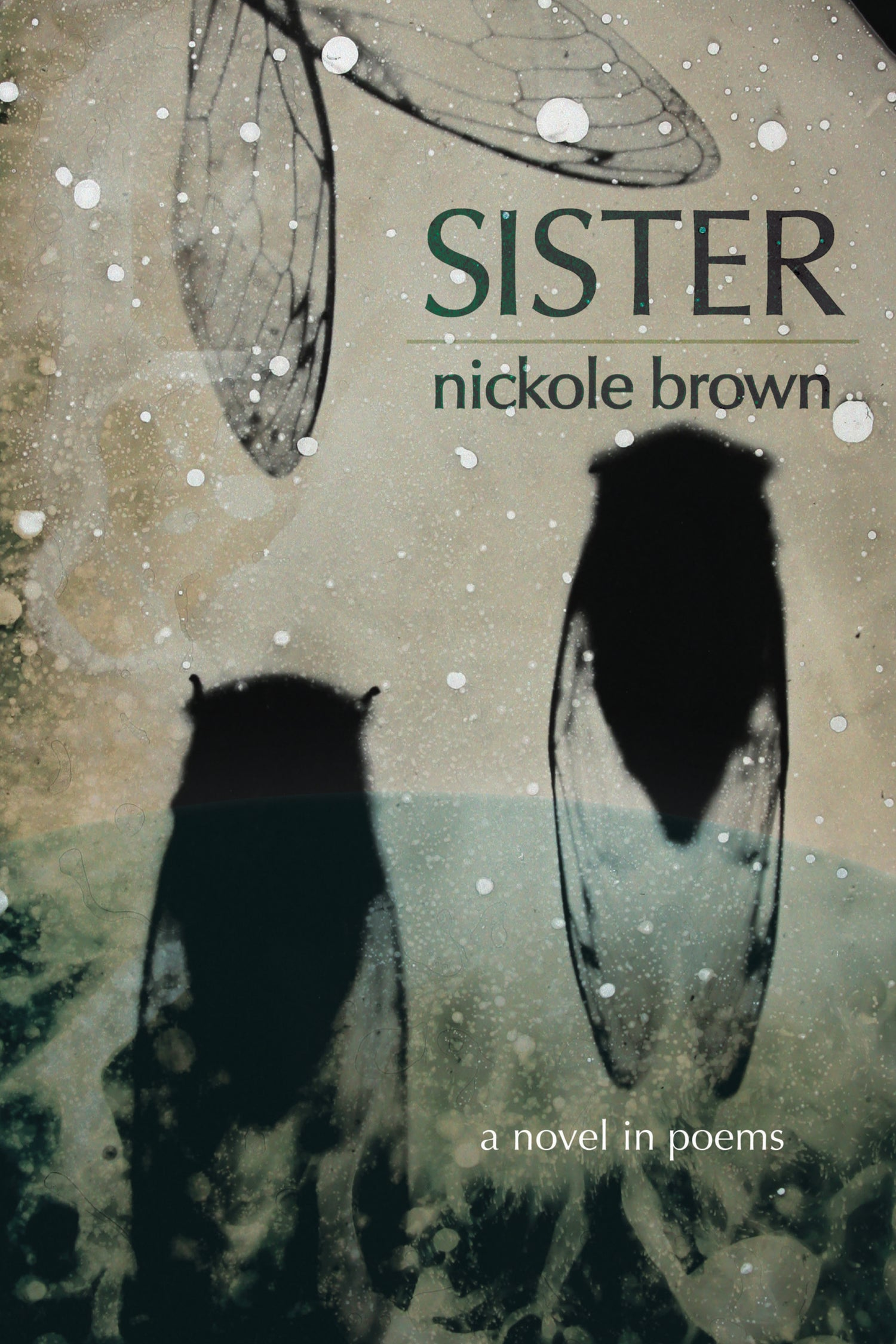 Image of Sister by Nickole Brown