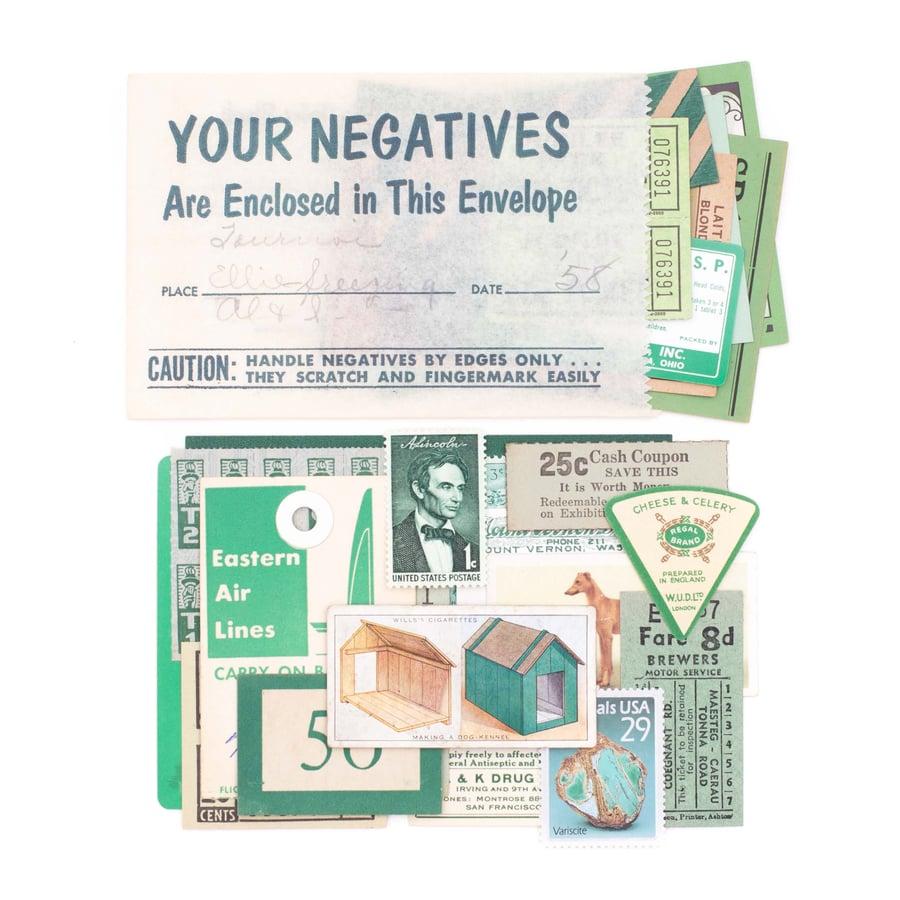 Image of Green Ephemera in Film Bag