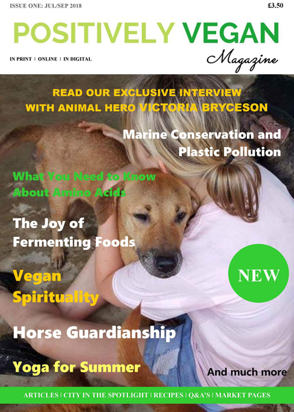 Image of Positively Vegan Magazine Issue 1