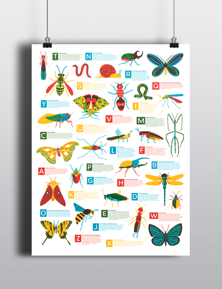 Image of Bug Alphabet Poster
