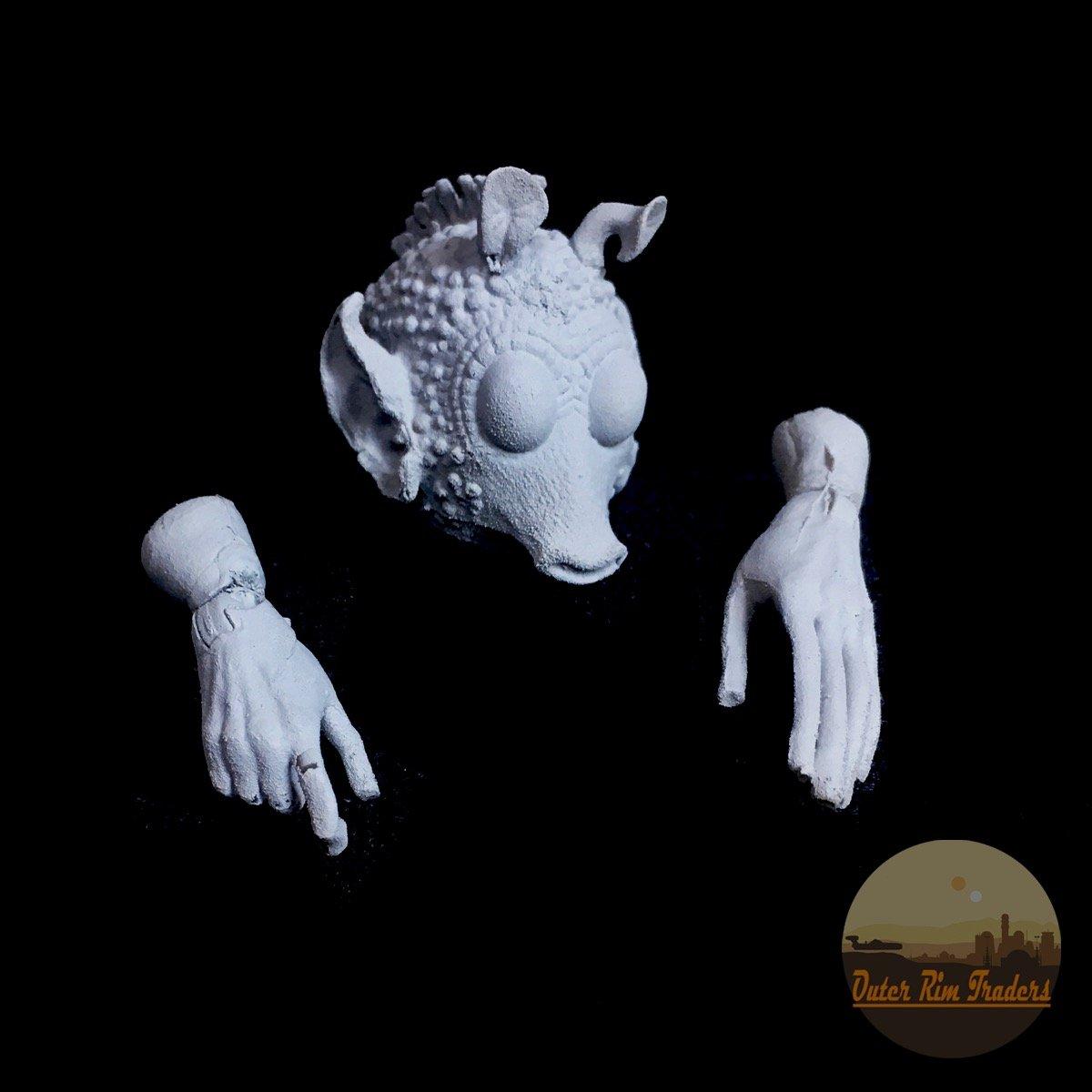 Image of Rodian Kit