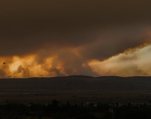 Image of Broad Canyon Fire