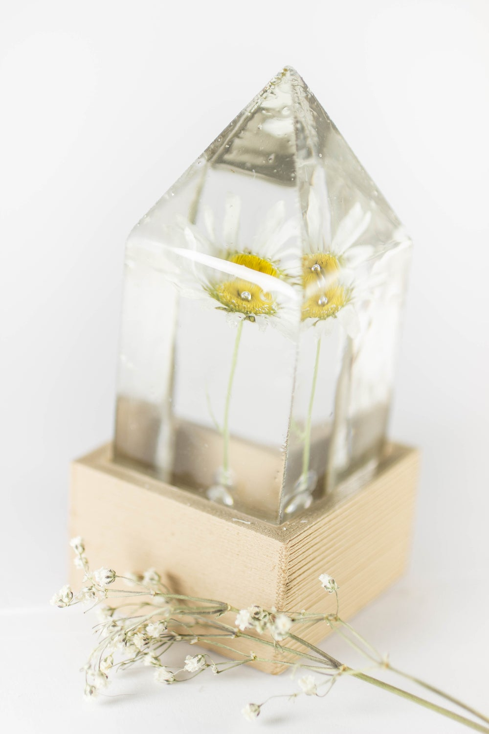 Image of Oxeye Daisy (Leucanthemum vulgare) - Floral Prism Desk Lamp #1