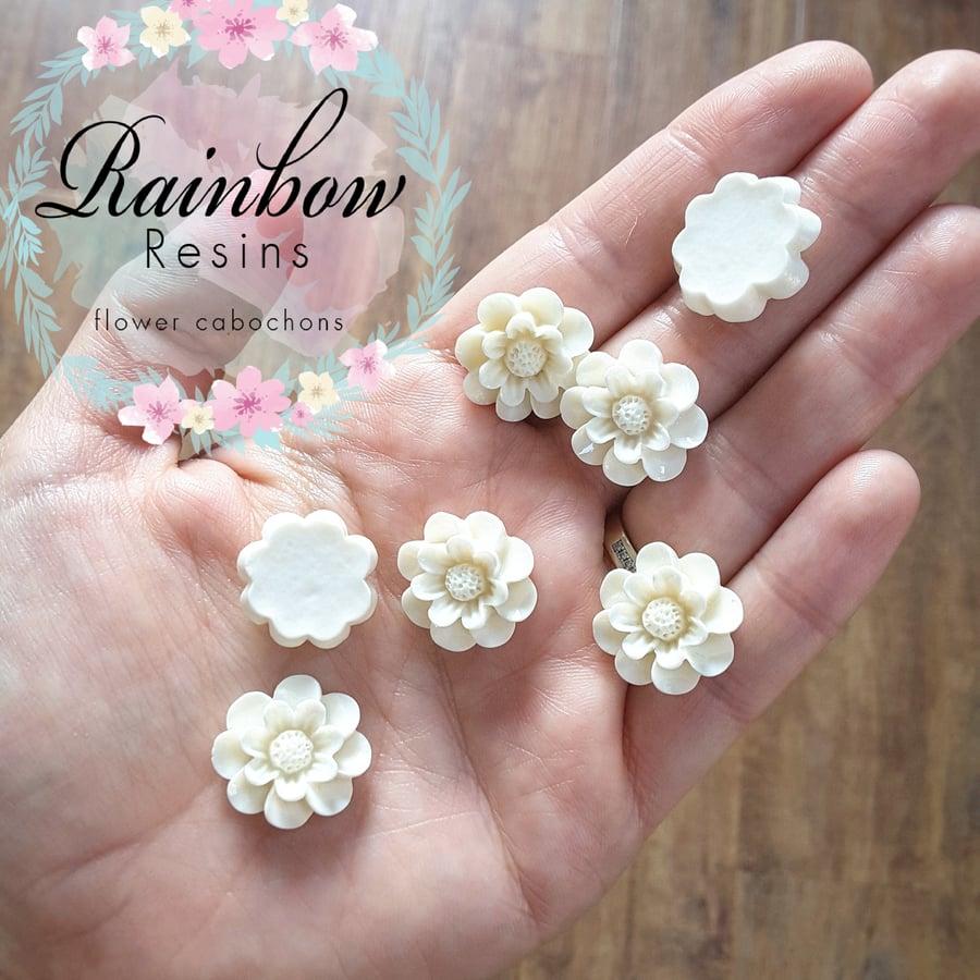 Image of White magnolia flowers x 10