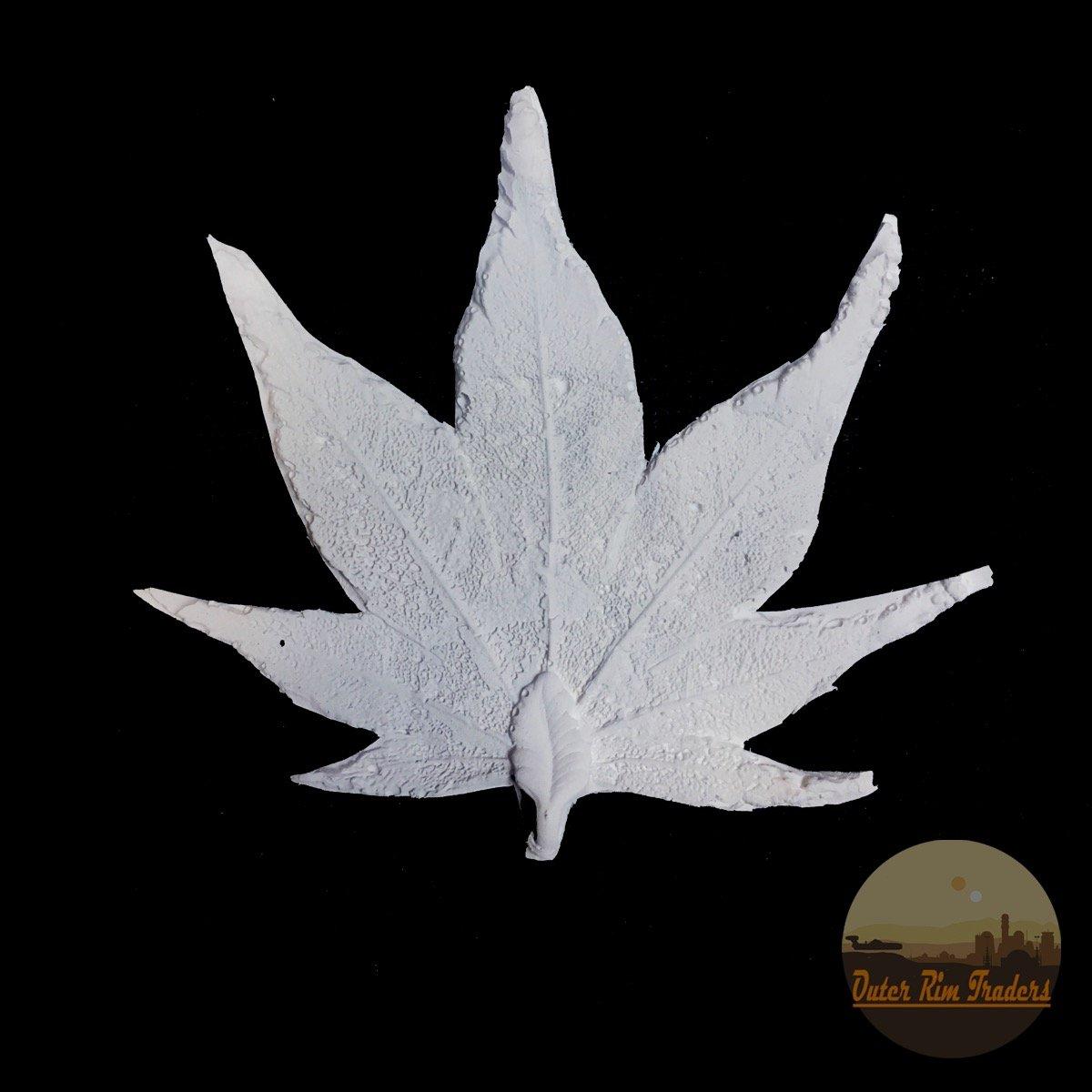 Image of Fan Leaf
