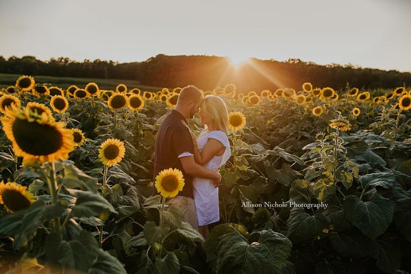 Image of Sunflower 🌻 Sessions!