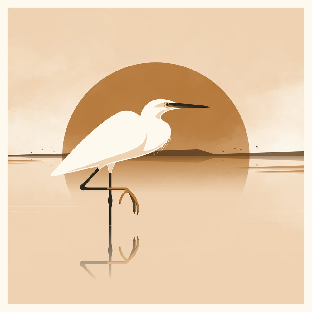 Image of Silky Heron Artprint