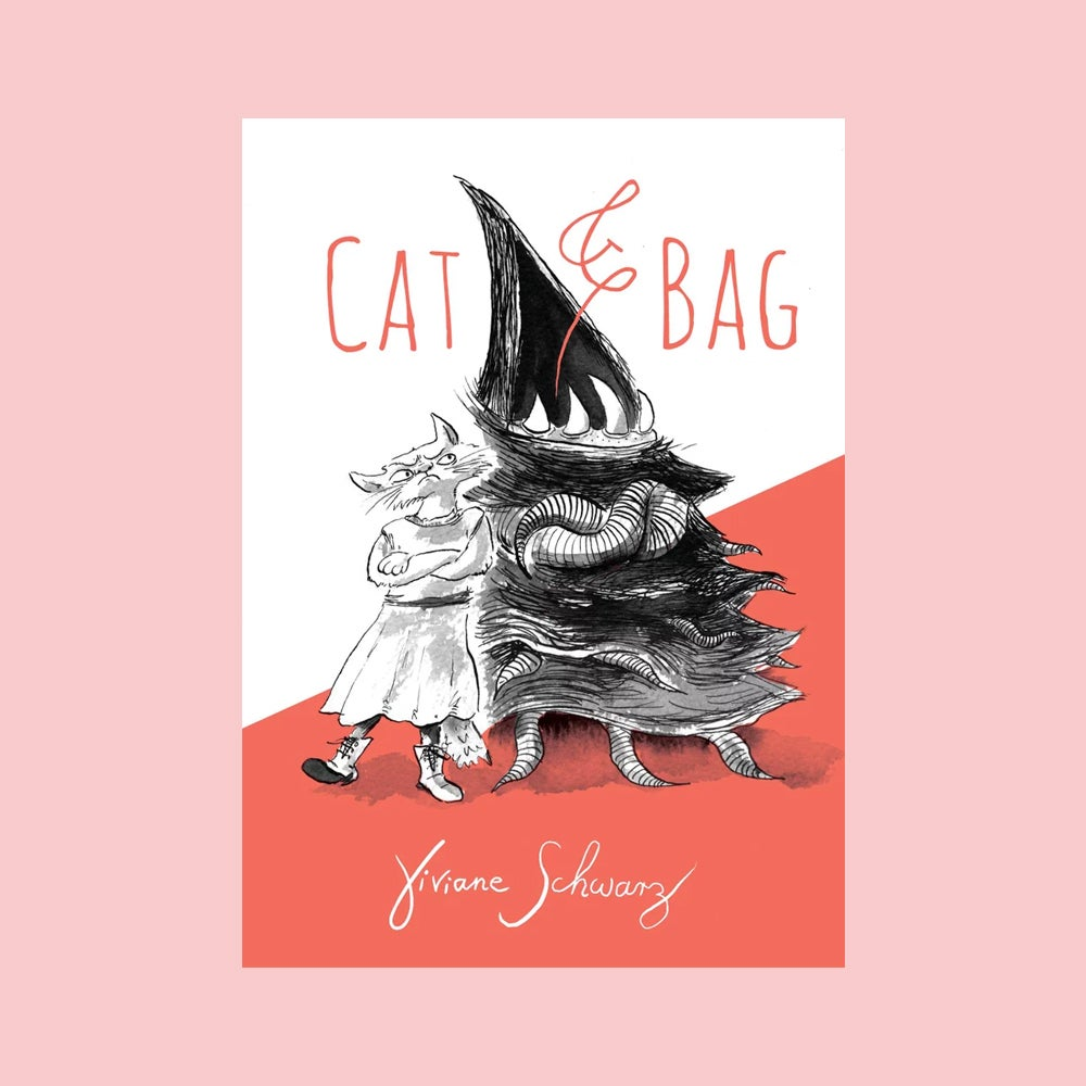 Image of Cat & Bag by Viviane Schwarz