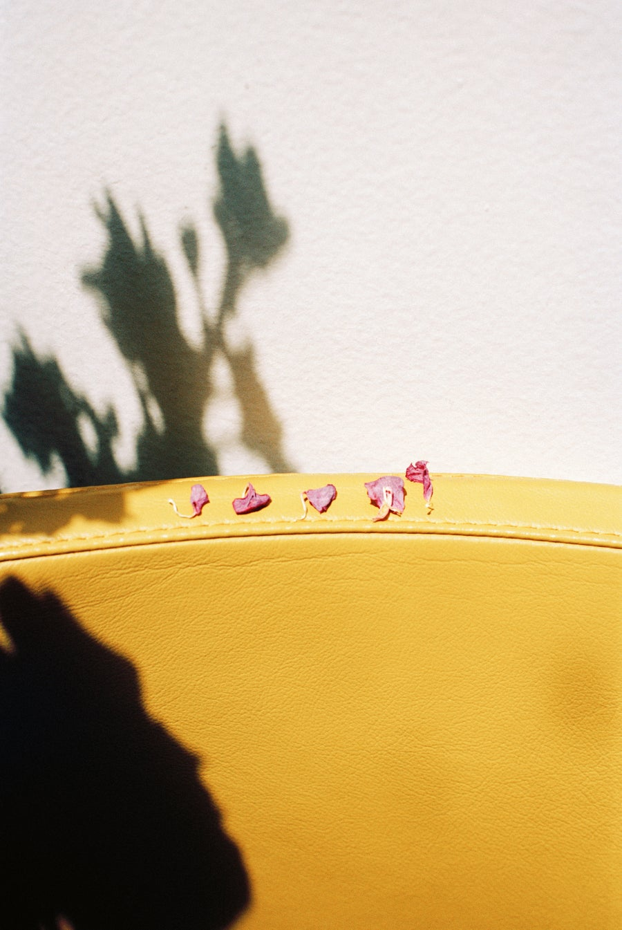 Image of Yellow chair and pink petals