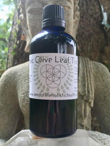 Image of Organic Olive Leaf Tincture 100ml