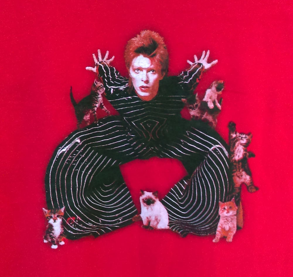 Image of David Bowie: Rebel Rebel XIV - Unisex