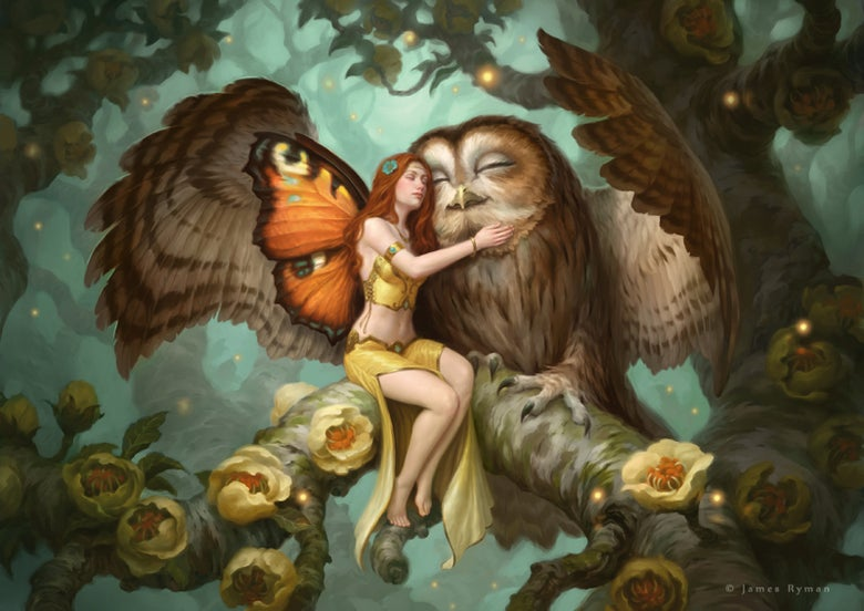 Image of Fairy and Owl