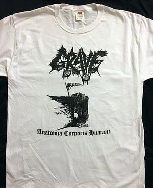 "Image of Grave "" Anatomia Corporis Humani "" white T shirt"