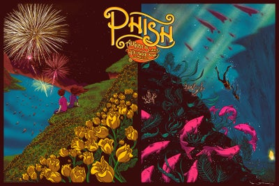 Image of Phish - Hollywood Bowl 2013