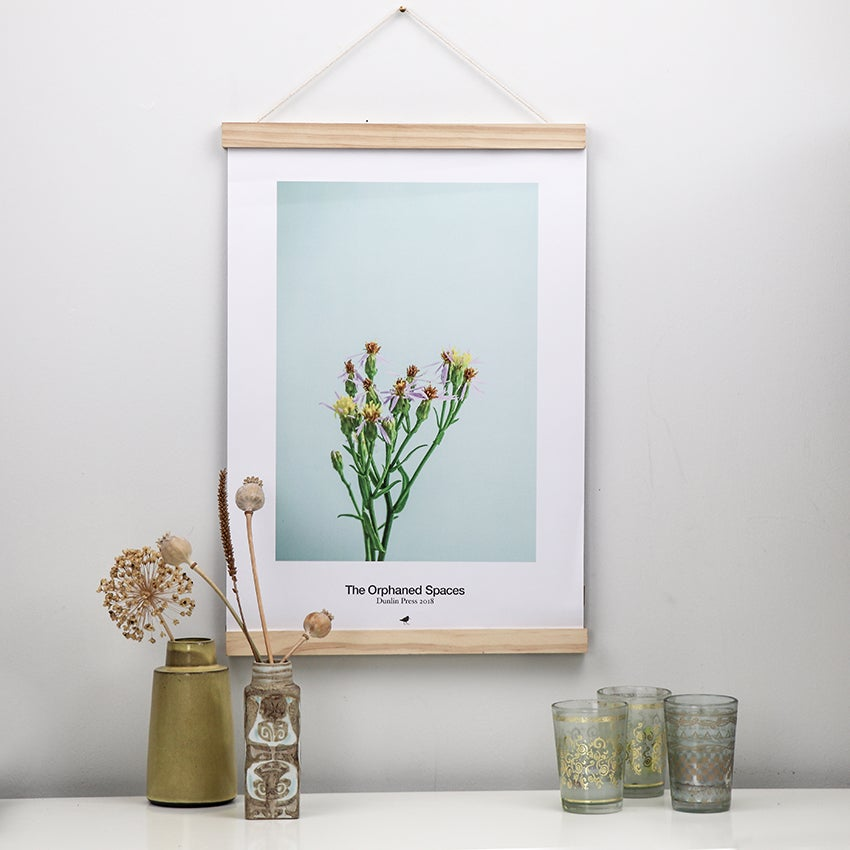 Image of THE ORPHANED SPACES, SEA ASTER STILL LIFE, LIMITED EDITION POSTER