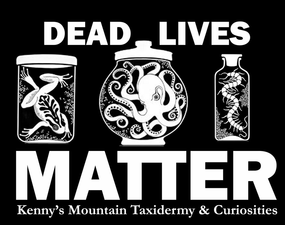 Image of Dead Lives Matter Tee