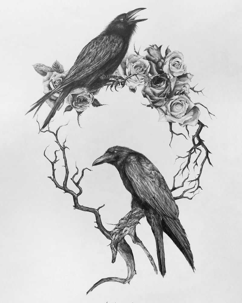 Image of Cauda Corvus