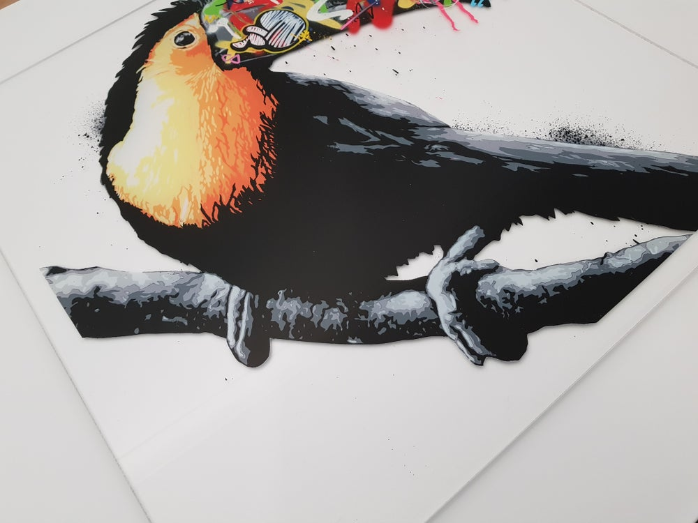 Image of MARTIN WHATSON - TOUCAN - HAND FINISHED 8 COLOUR SCREEN PRINT ON ACRYLIC SHEET - LTD ED 12