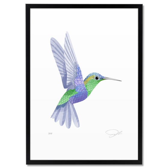 Image of Print: Hummingbird II