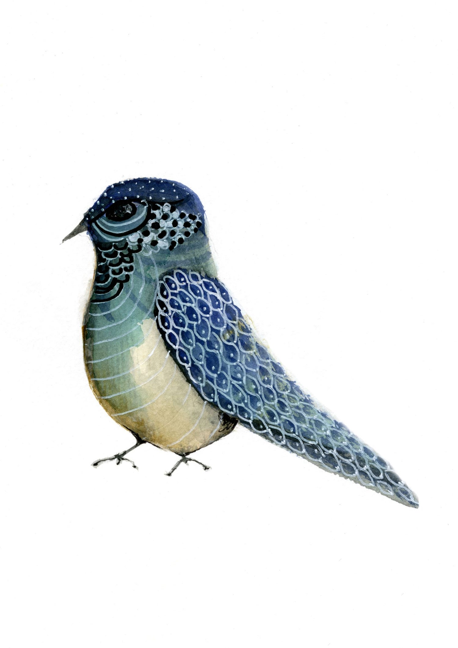 Image of Blue Bird