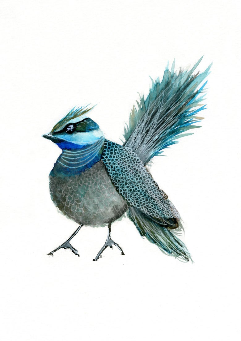Image of Petit Blue Bird