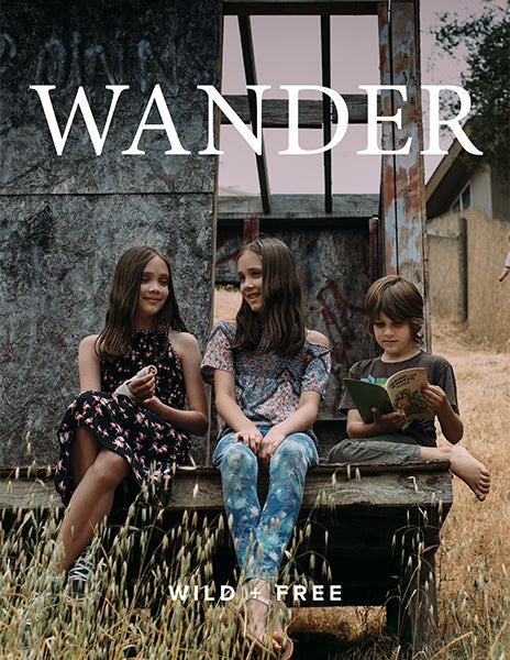 Image of WANDER Content Bundle