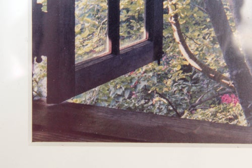 Image of Window + Tree Photograph