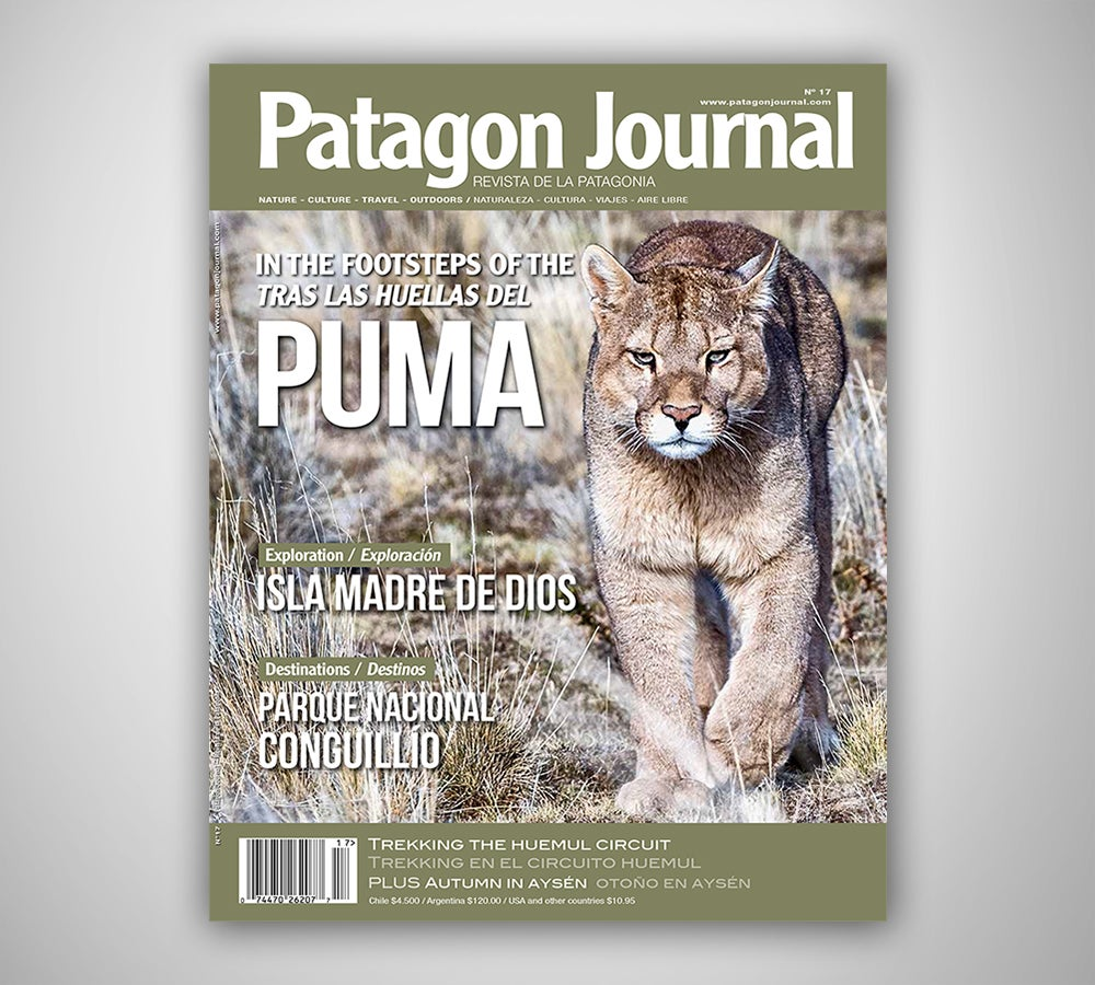 Image of Patagon Journal #17