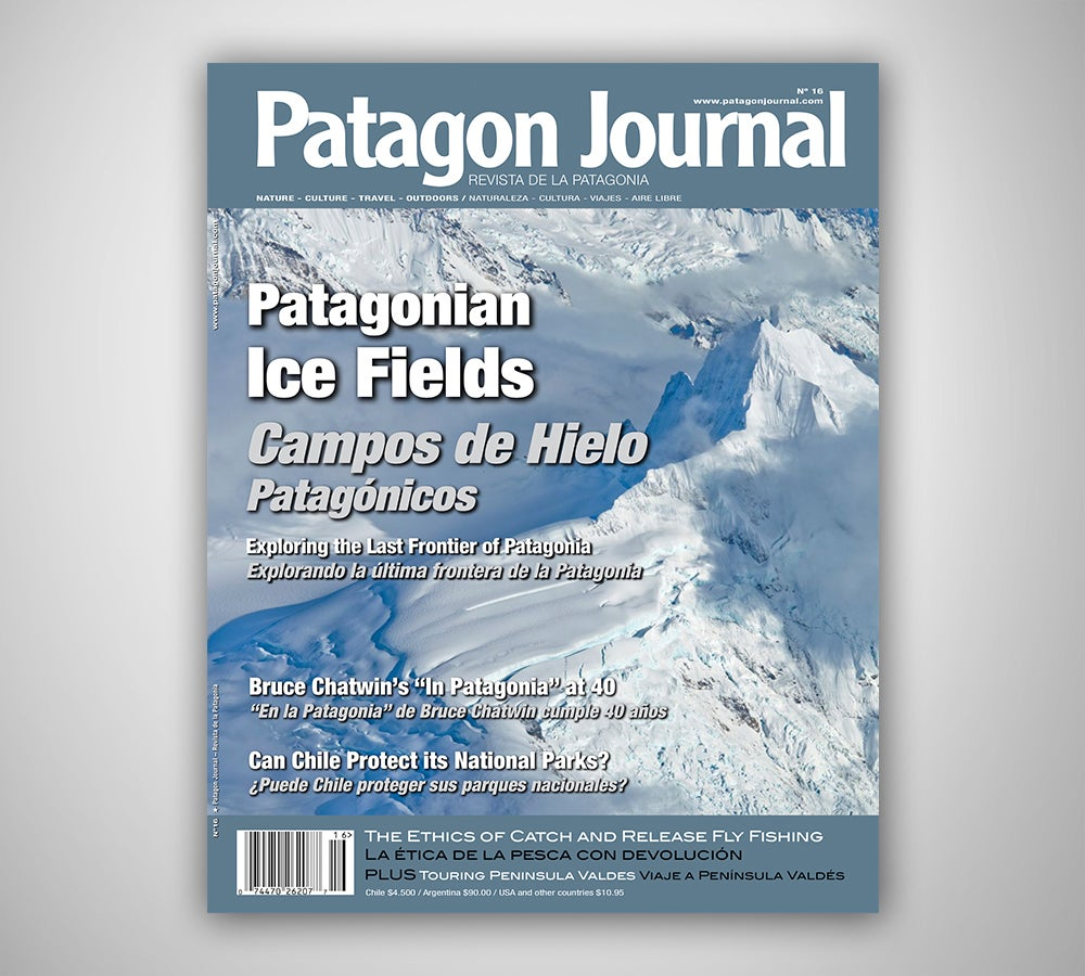 Image of Patagon Journal #16
